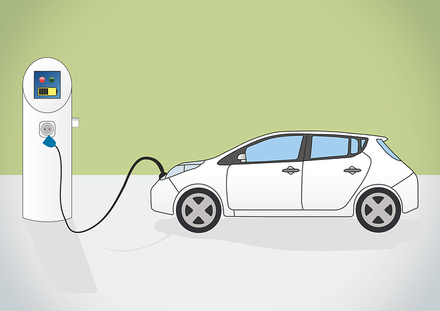 negocios cehiculo electrico 2020